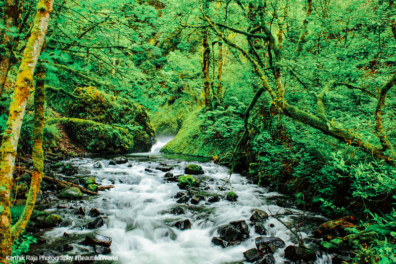 Bridal Veil Falls Creek, Columbia River Gorge National Scenic Ar