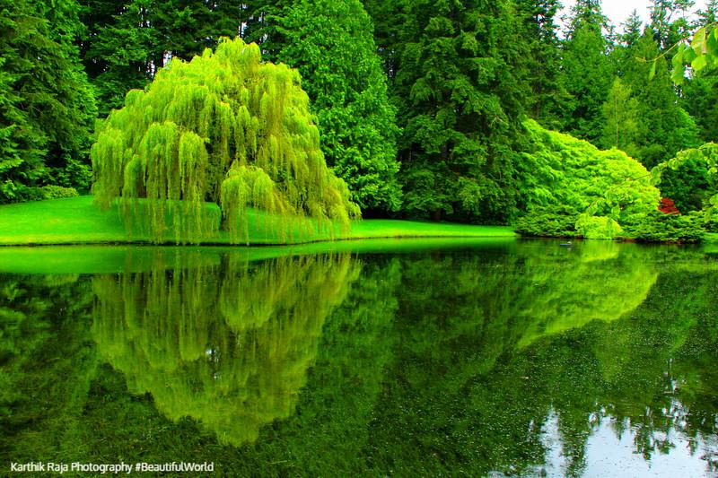 Bloedel Reserve, Bainbridge Island, Washington