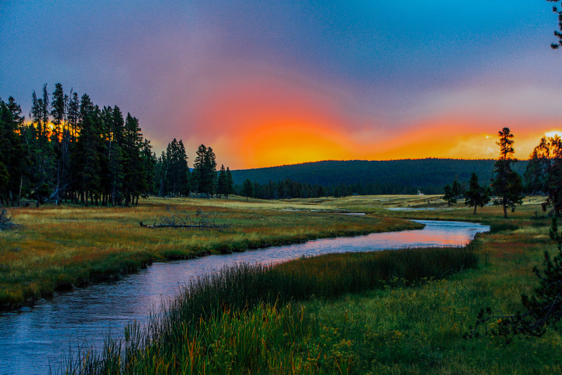 Madison river, Sunrise - Yellowstone National Park