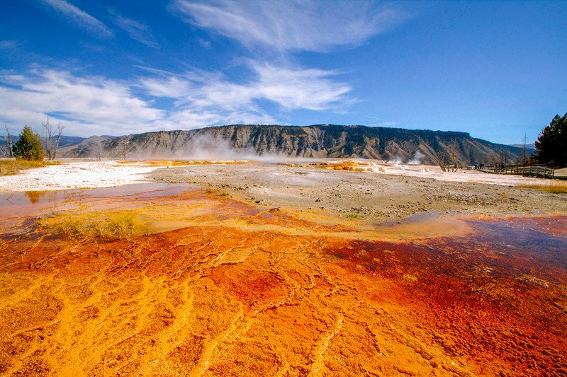 Mammoth Hot Springs - Yellowstone National Park