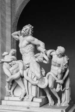Vatican Museum - statue of Laocoön and His Sons, Vatican City