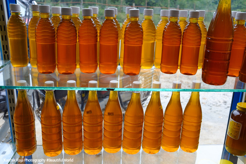 Fresh Honey, Kodagu District, Karnataka, India