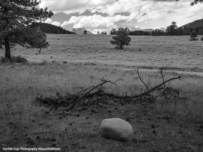 Upper Beaver Meadows, Rocky Mountain National Park, Colorado